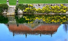 Reflets dans la Venoge (Diegojack) Tags: lisle vaud suisse venoge reflets château printemps couleurs d7200