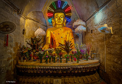 Electric neon Buddha in temple at Mrauk U, Myanmar (Phil Marion) Tags: philmarion beach public candid woman girl boy teen 裸 asian toy outdoor oriental schlampe 나체상 벌거 desnudo chubby nackt nu ヌード nudo 性感的 malibog セクシー 婚禮 hijab nijab burqa philippemarion arab desi indian african chinese ebony latina khỏathân swinger telanjang nubile برهنه tattoo fetish erotic lingerie feet nude slim plump tranny sex slut nipples ass xxx boobs tits upskirt naked sexy bondage fuck cameltoe cock gay wife dick
