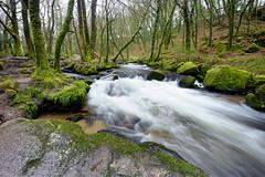 Golitha Falls (MKHardyPhotography) Tags: cornwall mkhardy