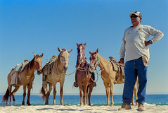 Pablo's Horses (GOJR.) Tags: nikonf2 nikkoro35mmf2 kodakektar100 film analog color travel mexico loscabos unicolorc41 beach sunny16