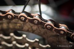 Bicycle Chain (Desdanova) Tags: transportation silver bicycle brown macromondays chain macro stockton california unitedstates us