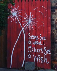 Red Sign (booboo_babies) Tags: red sign dandelion seeds words quote inspiration text