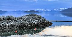 Une heure après minuit - One hour after midnight (croqlum) Tags: sorstraumen norvège landscape nature scandinavia europe boreallight bluehour light fjord bleu blue paysage lumièreboréale lumière norway scandinavie heurebleue