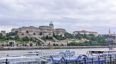 Buda Castle, Budapest, Hungary (ttchao) Tags: nikon d810 2470mm budapest hungary buda castle danube river danuberiver