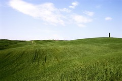 Il cuore della Toscana (michele.palombi) Tags: colline tuscany green film 35mm analogic orcia valle
