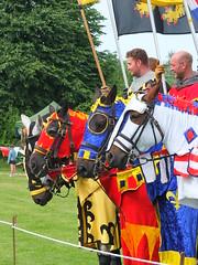 DSCF3897 (SierPinskiA) Tags: ruffordabbeycountrypark rufford knightsofnottingham fujixs1 jousting medieval horse knights goldeneagle falcon