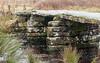 Clapper Bridge at Postbridge, Dartmoor. (Keith in Exeter) Tags: clapper bridge postbridge dartmoor nationalpark devon england uk river pier slab stone crossing water grass rush stonework