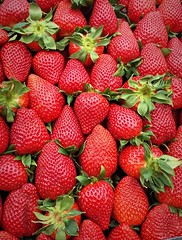 Strawberry sea (jimiliop) Tags: strawberries red bold color colour fruits food green closeup grocery street athens greece spring