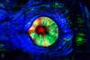 All Seeing Eye (Jared Beaney) Tags: canon6d canon asia japan tokyo tokyodisneyresort tokyodisneyseas tokyodisneysea disney themeparks themepark amusementpark photography photographer travel 20000leaguesunderthesea mysteriousisland darkride