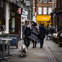 Flask Walk (London Less Travelled) Tags: uk unitedkingdom england britain london hampstead camden street urban suburb people dog cafe flask walk