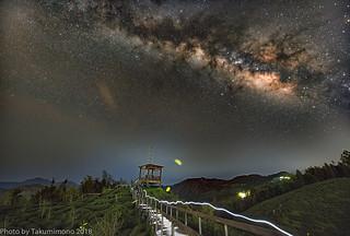 Dalunshan Gingko Forest Region & Milky Way & Firefly ,Taiwan