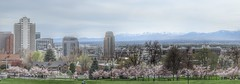 Sunday Afternoon (Robert Cowlishaw (Mertonian)) Tags: interesting city panoramic sundayafternoon spring canonpowershotg1xmarkiii markiii g1x powershot canon places mertonian lookingsouth saltlakecity