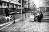 It's Important! (Aleksandar M. Knezevic Photography) Tags: ngc belgrade beograd serbia srbija street old woman reading dog bw monochrome blackwhote bwphoto bwphotography news newspaper