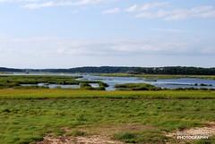 Great Marshes at Wellfleet, Cape Cod (Travel around Spain) Tags: cabocod capecod península massachusetts estadosunidos marismas