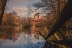Hessenpark... (hobbit68) Tags: water himmel wasser see zaun zaunpfahl windmühle windmills sky clouds spiegelung mirror reflexion reflecting baum tree 🌳