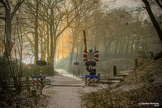 02/03/2018 | Venlo