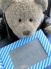 Are we there yet? (pefkosmad) Tags: tedricstudmuffin teddy ted bear cute cuddly animal toy stuffed soft plush fluffy holiday week holibob cottage cornwall bodmin cardinham westcountry westsidecottage daysout trips touring tourist tourism adventures boredom bored ennui