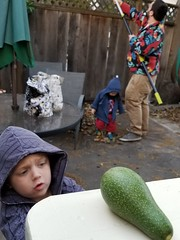 Avocado suspicion (quinn.anya) Tags: sam paul toddler preschooler avocado backyard andy