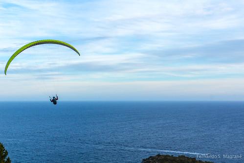 Paragliding_0805.jpg