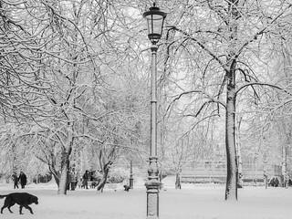 La neige etait trop blanche