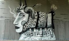 graffiti amsterdam (wojofoto) Tags: amsterdam nederland netherland holland graffiti streetart wojofoto wolfgangjosten 2018 amsterdamsebrug flevopark hof halloffame skount