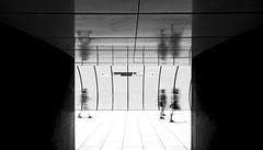 Citylife (CoolMcFlash) Tags: street streetphotography munich germany subway station candid city citylife people reflection canon eos 60d motion blur münchen deutschland ubahn stadt personen spiegelung bewegung bewegungsunschärfe fotografie photography sigma 1020mm 35 marienplatz bnw bw blackwhite sw schwarzweis monochrome