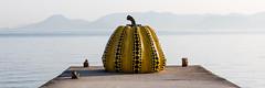 Kusama (GavinZ) Tags: asia japan naohsima travel yayoikasuma pumpkin pier ocean water art sculpture kusama