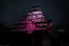 Tsuruga Castle (Jillian.P.Jenkins) Tags: 日本 会津若松 福島 鶴ヶ城 桜 ピンク japan fukushima aizuwakamatsu tsuruga castle sakura cherry blossoms pink