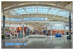 Cincinnati Airport - 1215 (GAPHIKER) Tags: cincinnati airport ohio kentucky woolly mammoth woollymammoth mammuthusprimigenius clock food court