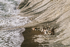 Olas (jdelrivero) Tags: agua mar geologia costa rocas guipuzkoa olas zumaia elementos playa geology beach elements sea euskadi españa es