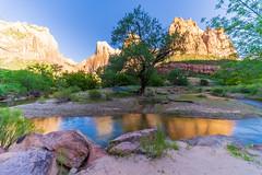 Zion_199-HDR (allen ramlow) Tags: zion national park landscape mountain water creek river reflection sony a7iii