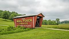 Mail Pouch Bridge (jmhutnik) Tags: bridge mailpouch coveredbridge guernseycountyohio ohio country rural clouds field farm grass trees
