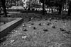 DRD160813_0198 (dmitryzhkov) Tags: russia moscow documentary street life human monochrome reportage social public urban city photojournalism streetphotography people bw dmitryryzhkov blackandwhite everyday candid stranger conversation speak group bunch sit seat