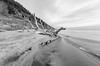 Lair (Aaron Springer) Tags: michigan northernmichigan lakemichigan thegreatlakes shoreline lakeshore driftwood dune sand water beach surf dragon monochrome blackandwhite outdoor nature landscape