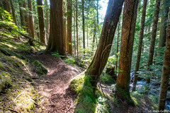 There is a Light - That Never Goes Out (Mark Griffith) Tags: banderamountain fathersday hike hiking masonlake scramble snoqualmiepass sonyrx100v trailrunning washington 20180617dsc07066