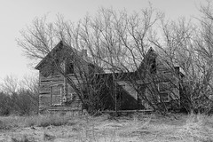 Once Upon a Time (gabi-h) Tags: abandoned dilapidated derelict house oncewashome monochrome blackandwhite gabih princeedwardcounty spring springtime trees branches grass moody lonely solitary quiet
