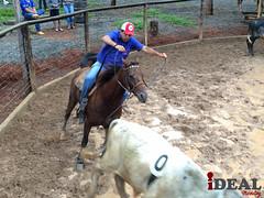 Lap Ranch-54 (idealmarketing) Tags: cavalo prova ranch sorting papagaios evento roça quarto milha