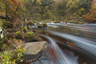 Autumnal Flow