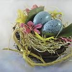 Robins Eggs thumbnail