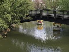 springtime waters (m_big_b) Tags: lake bridge boat luisenpark mannheim