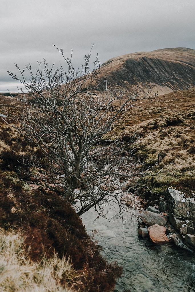 421 - Szkocja - ZAPAROWANA_
