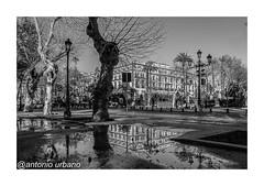Los  reflejos del Alfonso XIII. Sevilla (@antonio urbano) Tags: hotelalfonsoxiiisevilla sevilla alfonsoxiii antoniourbano