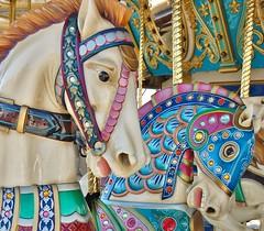 Count;y Fair (lckoch61) Tags: carousel horse animal