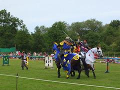 DSCF3846 (SierPinskiA) Tags: ruffordabbeycountrypark rufford knightsofnottingham fujixs1 jousting medieval horse knights goldeneagle falcon