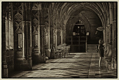 Cloister I (ye sons of art) Tags: worcester worcestershire england uk city cathedral monochrome sepia light summer history heritage religion