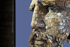 Fidel (Guillaume DELEBARRE) Tags: fidelcastro art statue artmoderne canon 5dmarkiv ef50f12 50mm profile assemblage iron cuba yoancapote immanence