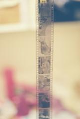 000035 (dnisbet) Tags: eos5roll2 canon film 35mm eos5 kodak200
