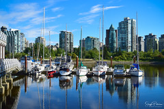Royal Vancouver Yacht Club/ Coal Harbour (SonjaPetersonPh♡tography) Tags: vancouver bc bcparks britishcolumbia canada nikon nikond5300 stanleypark stanleyparkseawall marina vancouverharbour coalharbor coalharbour waterfront waterscape burrardinlet inlet cityscape buildings boats reflections waterreflections scenic scenery landscape park sailboats vessels seawall vancouveryachtclub walkways pathways vancity beautifulbc
