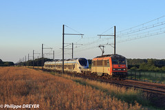BB26195 sur train Perrigny Modane vers Chamblanc (philippedreyer1) Tags:
