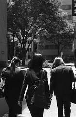 Untitled 20180616_18 (Satoshi Kondo) Tags: blackandwhite bnw bw blackandwhitephotography blackandwhitephoto bnwphoto bwphoto bnwphotography bwphotography blackandwhitepoto street streetphotography streetphoto streetsnap streets snap saturday japan filmphotography filmcamera filmphoto film leica leicaphoto leicaworld leicam3 m3 summicron monochrome